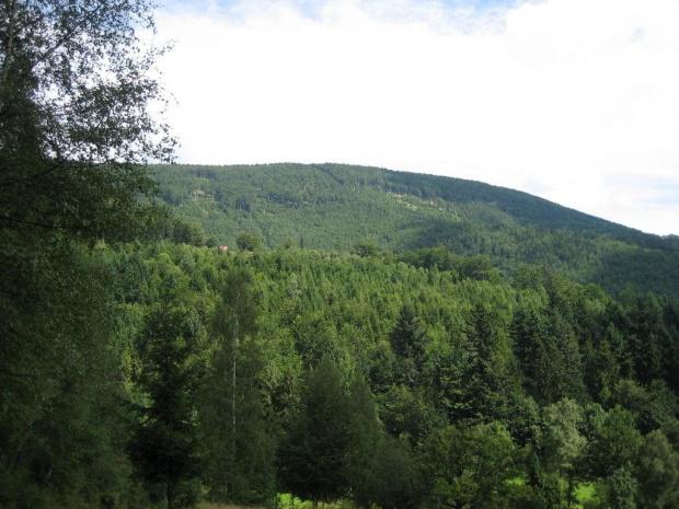 Magura (1109 m.) ze szlaku Karkoszczonka - Szczyrk Biła #góry #Beskidy #BeskidŚląski #Szczyrk