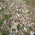 beskidzka drożyna #góry #Beskidy #BeskidŚląski #Szczyrk #Skrzyczne
