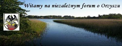 Forum Orzysz Strona Główna