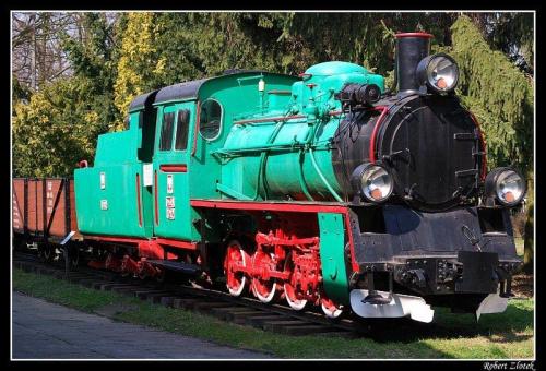 Uciekający pociąg z Muzeum Rolnictwa w Szreniawie. #pociąg #kolej #dworzec #lokomotywa #Szreniawa #muzeum #tory #szyny