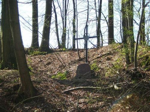 Wąwóz Zadole - pomnik poległego partyzanta #LasStocki #Zadole #pomnik #grób