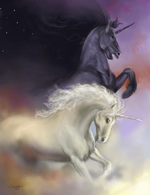 Unicorn X