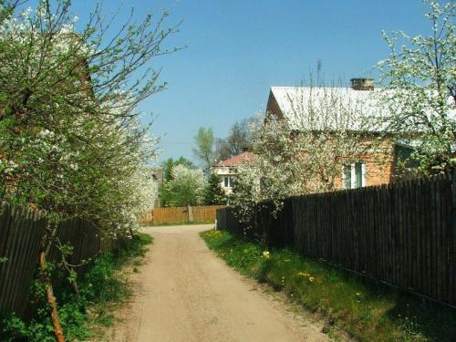 Jaworów #Jaworów #droga #wieś
