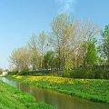 Kanał doprowadzający wodę z Kurówki na potrzeby Zakładów Azotowych #Azoty #Puławy #Kurówka