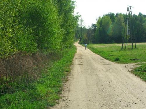 Jedziemy w stronę lasu #droga