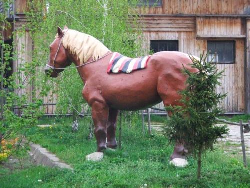 Ośrodek Oxer w Sadłowicach #Sadłowice #Oxer #koń #konie