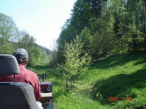 Stromy zjazd w stronę Łapina