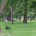 20 V 2007- Alejka w parku prowadząca do McDonalda #Muszla #TomaszówMaz