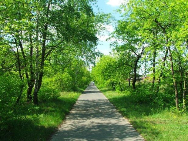 Jedziemy ścieżką wzdłuż torów kolejowych #droga