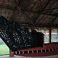 Centrum Kultury Polinezyjskiej - królewskie kanu #kultura #egzotyka #taniec #rośliny