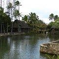 Centrum Kultury Polinezyjskiej - wioski nad rzeką #kultura #egzotyka #taniec #rośliny